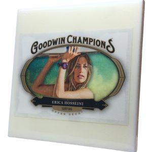 Erica Hosseini Coaster