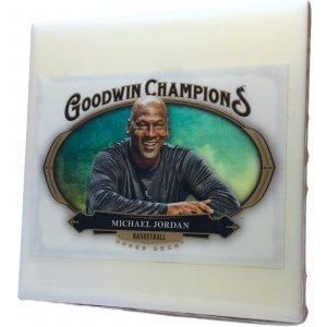 Michael Jordan Coaster